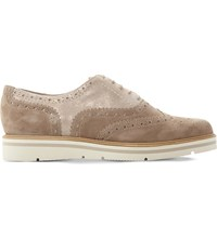 Dune Feathers Suede Brogues Blush Nubuck