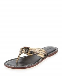 Bernardo Miami Exotic Leather Sandal Snake