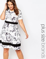 Praslin Plus Size Skater Dress In Mono Floral Print With Contrast Band Mono White