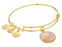 Alex And Ani Art Infusion Lotus Peace Petals Bracelet Rafaelian Gold Bracelet