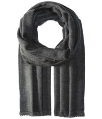Pistil Dane Scarf Charcoal Scarves Gray