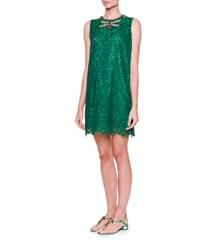 Dolce And Gabbana Embellished Dragonfly Lace Shift Dress Light Musk Green Verde Muschio Chi