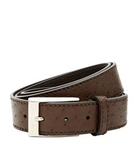 Canali Ostrich Leather Belt Unisex Chocolate