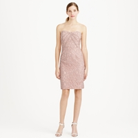 J.Crew Kelsey Strapless Dress In Leavers Lace