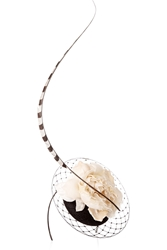 Philip Treacy Feather Embellished Veiled Parisisal Headpiece