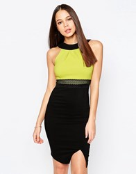 Vesper Julietta Pencil Dress With Contrast Top Lime Green
