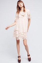 Anthropologie Magnolia Lace Dress Peach