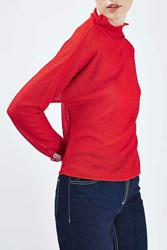 Boutique Gauzy Funnel Longsleeve Top By Red