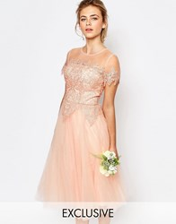 Chi Chi London Tulle Lace Midi Dress Rose Cloud Pink