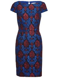 Gina Bacconi Corded Embroidery Lace Shift Dress Royal Blue