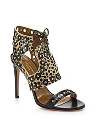 Aquazzura Rebel Studs Cheetah Print Calf Hair And Leather Sandals