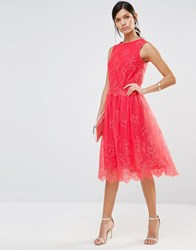 Little Mistress Lace Scallop Hem Skirt Papaya Red