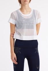 Lucas Hugh Mesh Cropped T Shirt