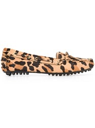 Car Shoe 'Leopard Print Driver' Loafers Brown