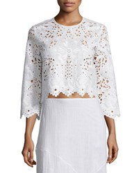 Theory Brizabela Embroidered Linen Crop Top Women's White