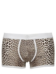 Roberto Cavalli Leopard Print Stretch Cotton Boxer Brief