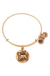 Alex And Ani Women's 'Zodiac' Expandable Wire Bangle Gold Taurus