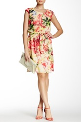 Robbie Bee Cap Sleeve Print Dress Multi