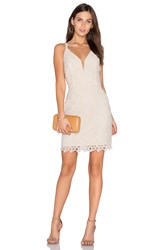 Greylin Olivia Lace Dress Ivory