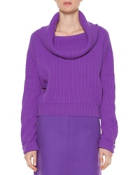 Tomas Maier Cashmere Ribbed Cowl Neck Sweater Purple