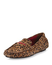 Terry Trimmed Suede Driver Leopard Red Manolo Blahnik