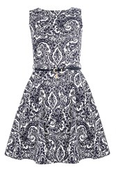Quiz Navy Cotton Paisley Print Skater Dress
