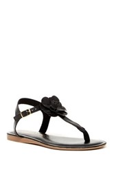 Italian Shoemakers Mae Slingback Thong Sandal Black