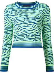 House Of Holland Zebra Print Sweater Green