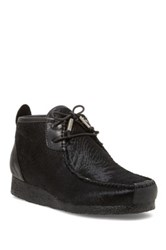 Australia Luxe Collective Lucan Genuine Shearling Lined Chukka Moc Boot Black