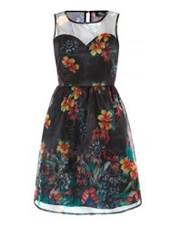 Mela Loves London Sheer Floral Print Prom Dress Black