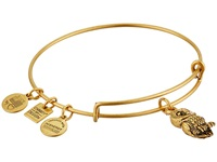 Alex And Ani Charity By Design Ode To The Owl Charm Bangle Rafaelian Gold Finish Bracelet