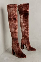 Anthropologie Ombre Velvet Over The Knee Boots Brown
