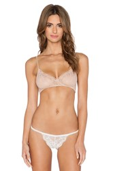 Only Hearts Club Stretch Lace Bralette Tan