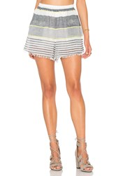 Astr Ibizia Short Gray