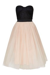 Bustier Tutu Prom Dress By Rare Black