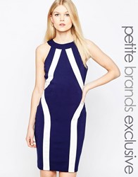 Paper Dolls Petite Colour Block Halter Pencil Dress Navy Blue