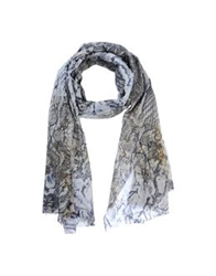 Angelina Folies Oblong Scarves Light Grey