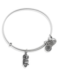 Alex And Ani Ode To The Owl Expandable Wire Bangle Charity By Design Collection Rafaelian Silver