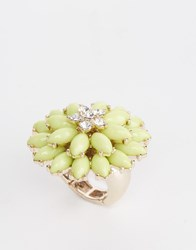 Lipsy Double Row Flower Ring Green