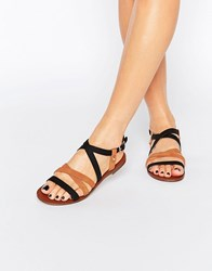Oasis Contrast Strap Flat Sandals Tan And Black Multi