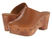 Cordani Zorba Walnut Leather Women's Clog Shoes Brown