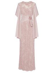 Anoushka G Martha Embellished Lace Maxi Dress Pink