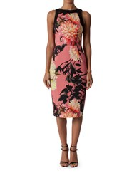 Black Halo Floral Printed Sheath Dress Pink