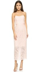 Shoshanna Ellie Lace Dress Blush Pink