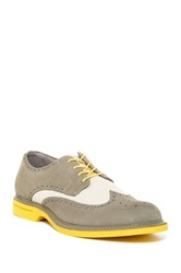 Sperry Gold Wingtip Oxford Gray