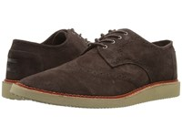 Toms Brogue Chocolate Brown Suede Men's Lace Up Casual Shoes