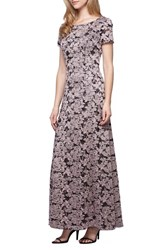 Alex Evenings Women's Embroidered Lace A Line Gown