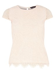Dorothy Perkins Lace Sequin T Shirt Pink