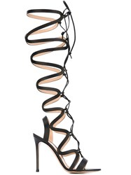 Gianvito Rossi Lace Up Gladiator Sandals Black