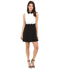 Jessica Simpson Collard Lace Combo Dress Black White Women's Dress